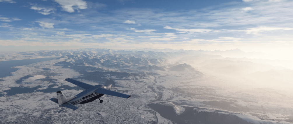 Microsoft Flight Simulator plane